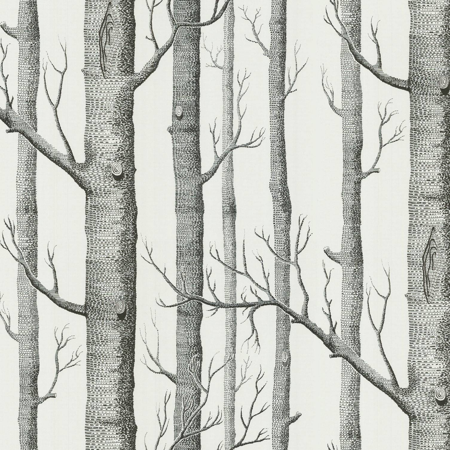 Cole And Son Woods cole & son - new contemporary two - woods - 6912147